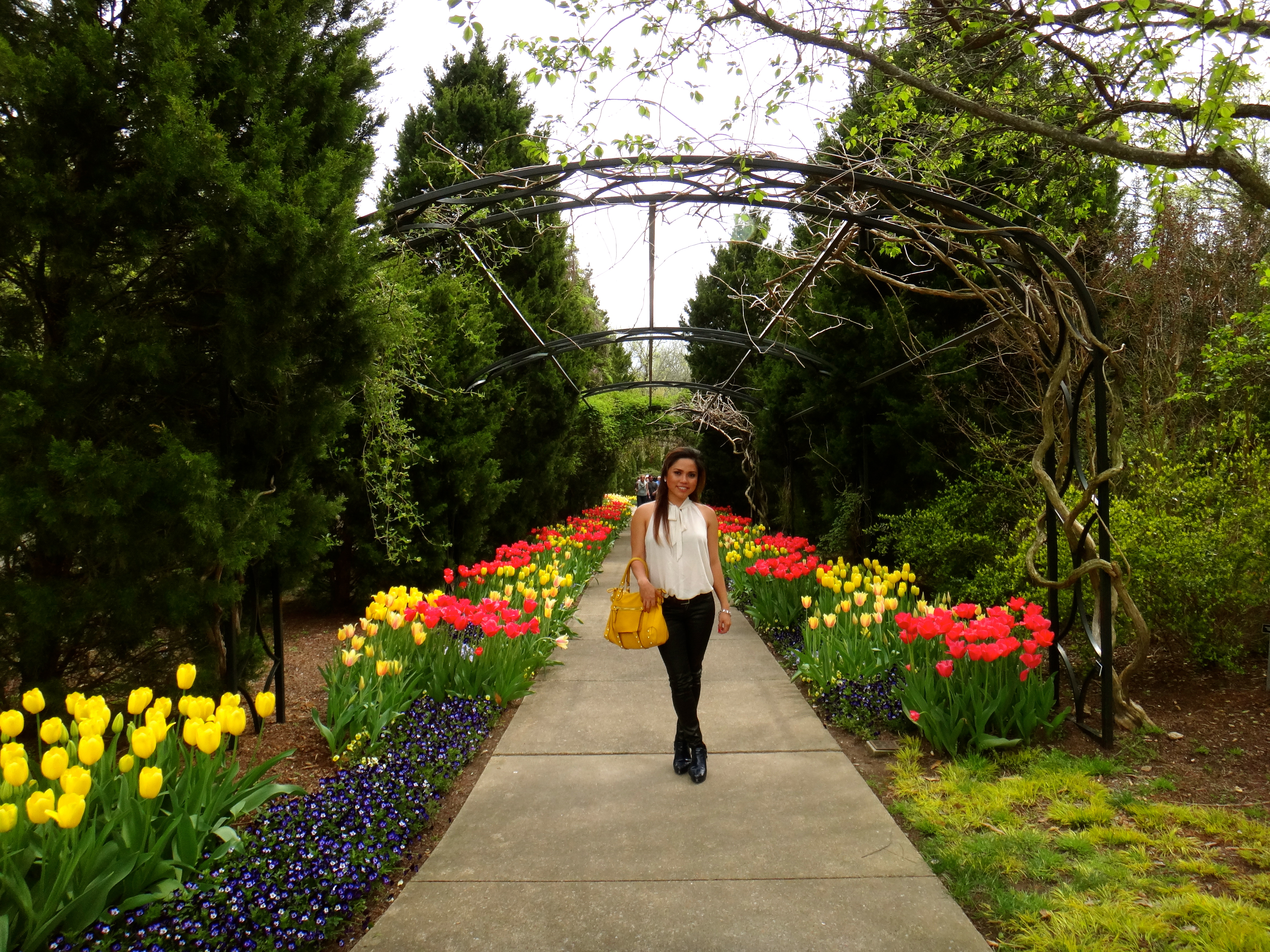 My Cousin Is A Big Fan Of Flowers And Wanted To Check Out Cheekwood  Botanical Garden